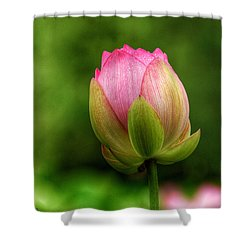 One Bloom Shower Curtain