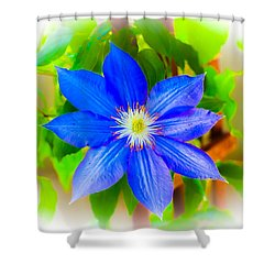 One Bloom - Pla226 Shower Curtain by G L Sarti