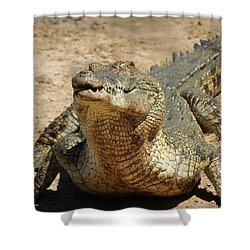 One Crazy Saltwater Crocodile Shower Curtain by Gary Crockett