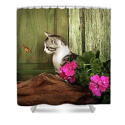 One Cute Kitten Waiting At The Door Shower Curtain