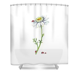 Shower Curtain featuring the painting One Daisy And Four Ladybugs by Heidi Kriel