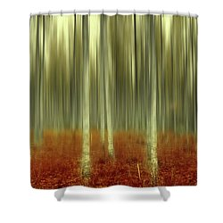 One Day Like This Shower Curtain
