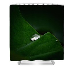 One Drop Shower Curtain
