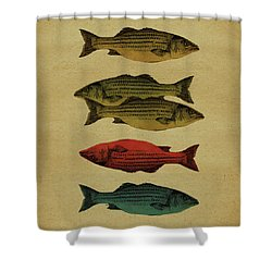One Fish, Two Fish . . . Shower Curtain by Meg Shearer