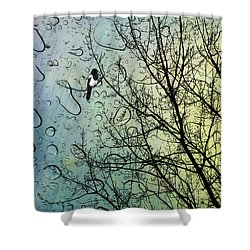 One For Sorrow Shower Curtain by John Edwards