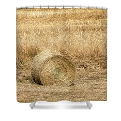One Hay Ball -  Shower Curtain