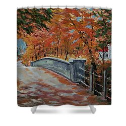 One Lane Bridge Shower Curtain