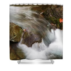 One Left Shower Curtain by Mike  Dawson