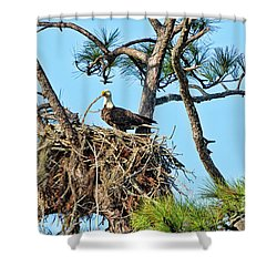 Shower Curtain featuring the photograph One More Twig by Deborah Benoit
