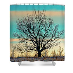 Shower Curtain featuring the photograph One by Nina Stavlund
