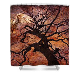 One Of These Nights 2015 Shower Curtain