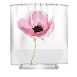 One Pink Beauty Shower Curtain