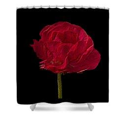 One Red Flower Tee Shirt Shower Curtain