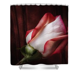 One Red Rose Still Life Shower Curtain