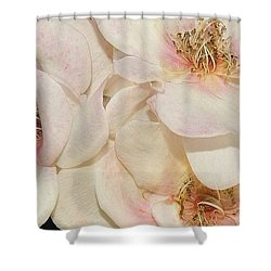 One Small Visitor Shower Curtain by Reb Frost
