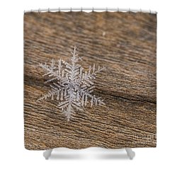 Shower Curtain featuring the photograph One Snowflake by Ana V Ramirez