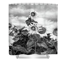 One Stands Tall Shower Curtain