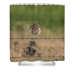 One Sweet Goodnight Shower Curtain