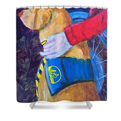 Shower Curtain featuring the painting One Team Two Heroes 3 by Donald J Ryker III