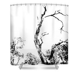 One Tree - 0192 Shower Curtain by G L Sarti