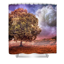 Shower Curtain featuring the photograph One Tree In The Meadow by Debra and Dave Vanderlaan