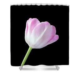 One Tulip Shower Curtain