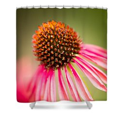 Shower Curtain featuring the photograph One by Wade Brooks