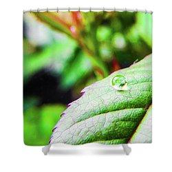 One Waterdrop Shower Curtain by Cesar Vieira