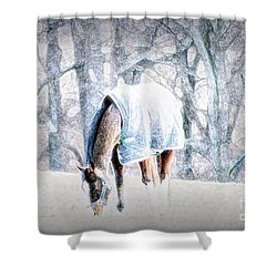 One With The Land In Lancaster County, Pa Shower Curtain