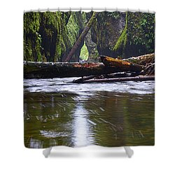 Shower Curtain featuring the photograph Oneonta Pano by Jonathan Davison