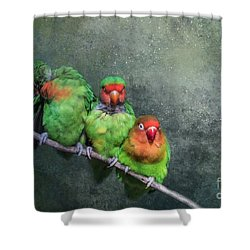 One,two,three... Shower Curtain