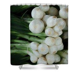 Onion 2 Shower Curtain by Travis Burgess