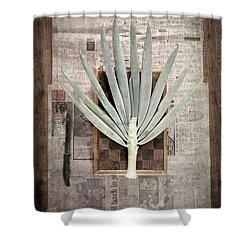 Shower Curtain featuring the photograph Onion by Linda Lees