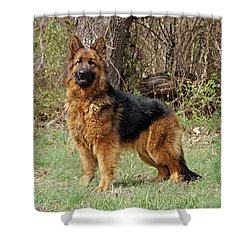 Shower Curtain featuring the photograph Onja by Sandy Keeton