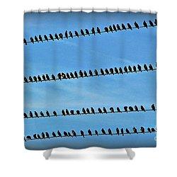 Online Birding Shower Curtain