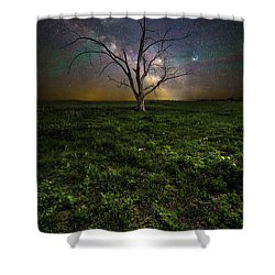 Shower Curtain featuring the photograph Only by Aaron J Groen