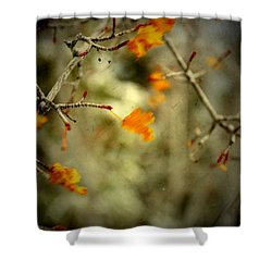 Only Now  Shower Curtain