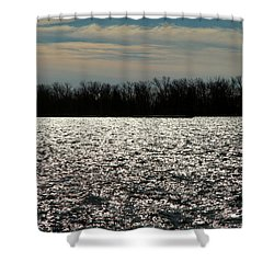 Shower Curtain featuring the photograph Ontario Winter Reflections by Valentino Visentini