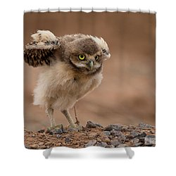 Onto New Adventures Shower Curtain