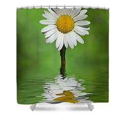 Oops Za Daisy Shower Curtain by Rick Friedle