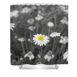 Shower Curtain featuring the photograph Oopsy Daisy by Benanne Stiens