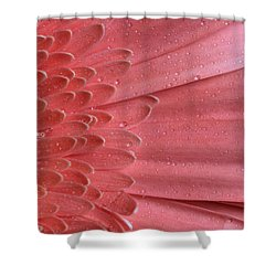Oopsy Daisy Shower Curtain by Shelley Neff