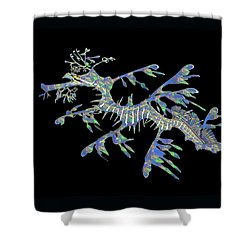 Opalised Sea Dragon Shower Curtain by Gary Crockett