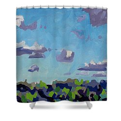 Open Gallery Cu Fractus Shower Curtain