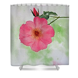 Open Rose Shower Curtain