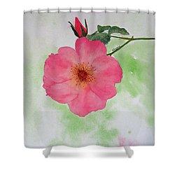 Open Rose Shower Curtain