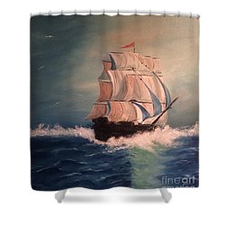 Shower Curtain featuring the painting Open Seas by Denise Tomasura