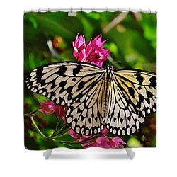 Open Wings Shower Curtain