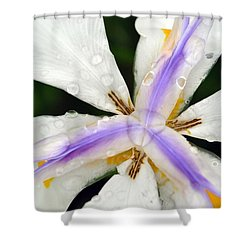 Open Your Petals Shower Curtain by Amanda Eberly-Kudamik