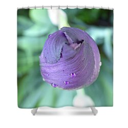 Opening Soon Shower Curtain